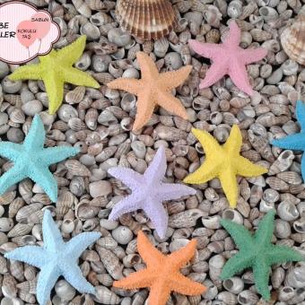 Deniz Yıldızı Magnet