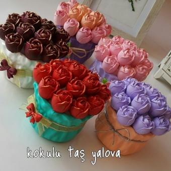 Saksı Güller