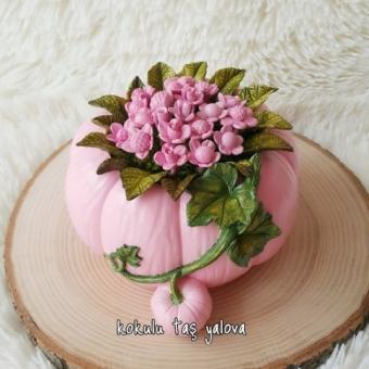Balkabağı  Çiçekli Saksı