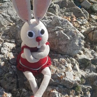 Uzun kulak tavşan