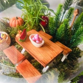 Terarium Minyatür Bahçe