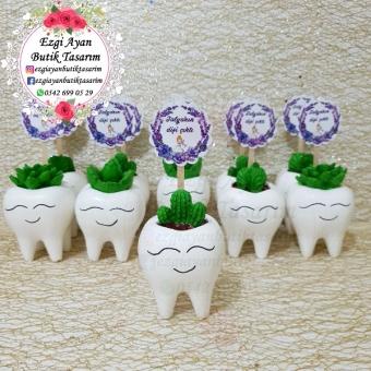 Kokulu Taş Diş Saksısında Kaktüs ve Sukulent